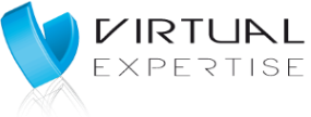 Virtual Expertise